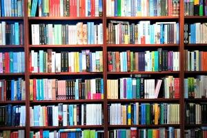 boekenkast_01_bieblio
