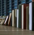 Boekendomino recordpoging Arnhem (foto: vtm)